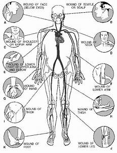 Rmsquest7    Pressure Point