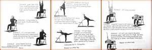 yoga poses for elderly work out picture media
