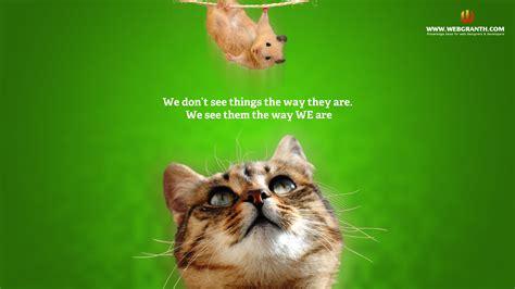 Animal Screensavers Wallpaper - animals wallpaper wallpapersafari