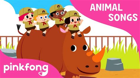 peek  zoo animal songs pinkfong songs  children