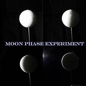 Moon Phases Experiment | Fun Family Crafts