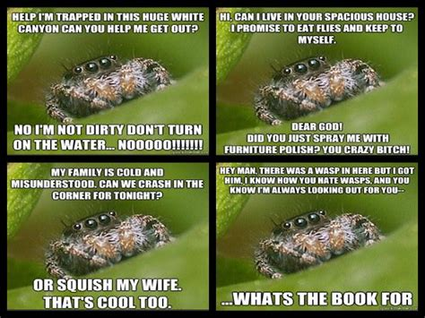 Sad Spider Meme - misunderstood spider hilarity ensues pinterest