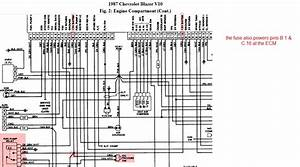 Wiring Diagram Additionally Gm Ecm On - Wiring Diagrams Image Free