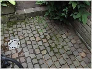 Wohncontainer Zu Verschenken : vorgarten mit basaltsplitt wohn design ~ Jslefanu.com Haus und Dekorationen