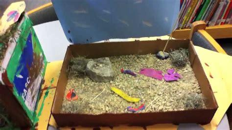 grade habitats youtube