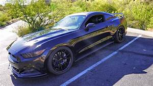 The BEST $300 I have ever spent on my Mustang GT - Eibach Sportline Review - YouTube