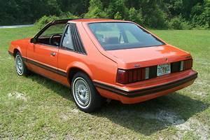 1981 Ford Mustang, One Family Original Survivor