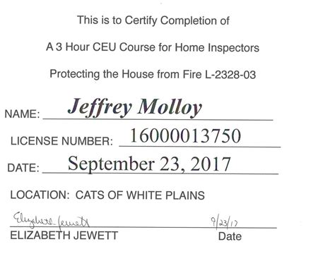 check mark services llc certificates continued