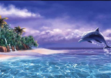 life marketplace sea tropical dolphin