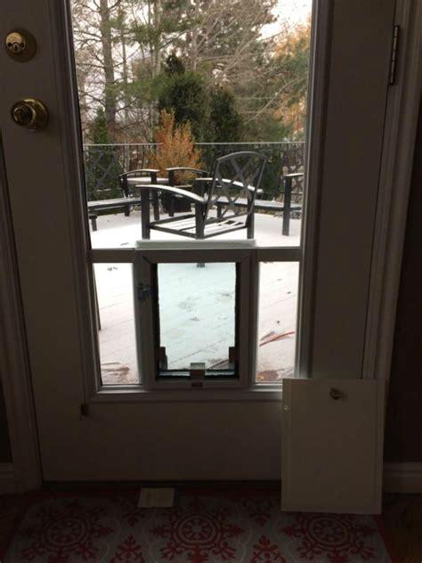 glass pet doors idaho pet door