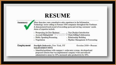 11 professional summary for resume no work experience professional summary sle notary letter