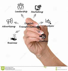 Diagram Of Digital Transformation Stock Image