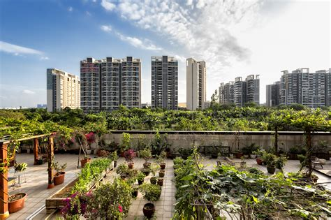 Can urban agriculture reduce food insecurity for the urban ...