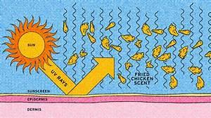 Creme Solaire Dessin : la cr me solaire parfum poulet frit un wtf beaut sign kfc ~ Melissatoandfro.com Idées de Décoration