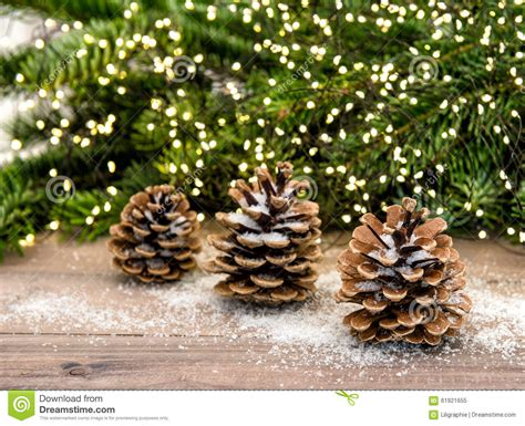 pine cone  christmas tree branches lights decoration