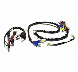 Front To Rear Wiring Harness For The Drive Odyssey  S45200