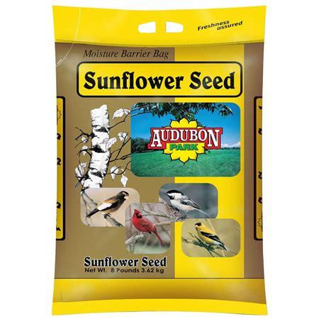 audubon park sunflower seed wild bird food 8 pound bag