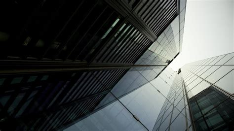 Survive Office 10 Tips For Moving Up Corporate Ladder