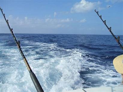 Fishing Offshore Marlin Charters Run Wallpapers Lures