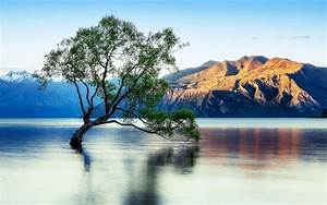 Lake Wanaka Beautiful Reflection New Zealand Wallpaper For Desktop   Wallpapers13 Com