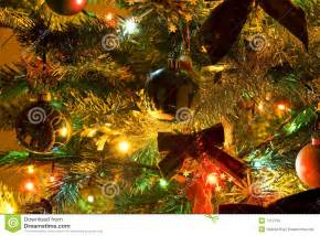 tree with lights royalty free stock image image 7112756