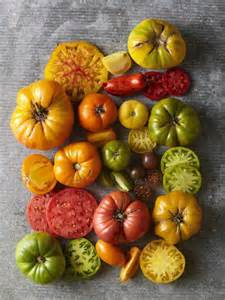 Heirloom Tomatoes Varieties