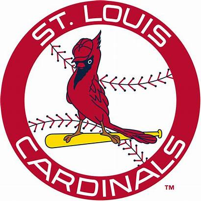 Cardinals Louis St Cardinal Clipart Logos Stl
