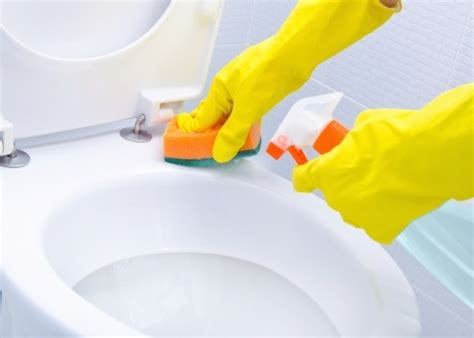 toilet schoonmaken stappenplan how to properly clean the toilet