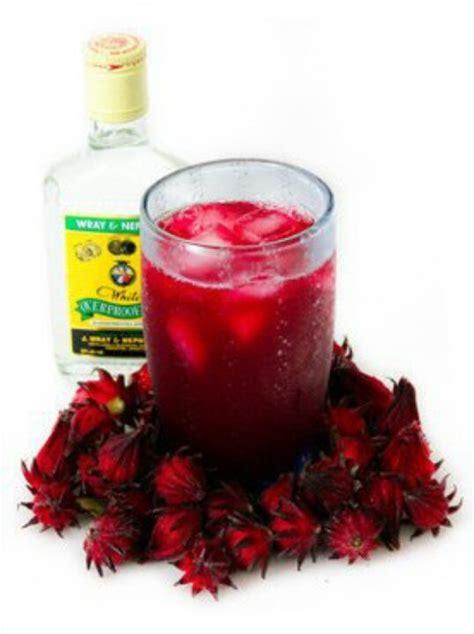 jamaica drink celebrate christmas like a jamaican sorrel drink recipe dishmaps