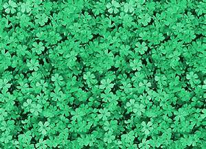 Green Tumblr Wallpaper