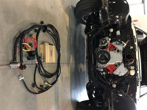 lsx standalone ecu  plug play engine wiring harness ms gold box onperformance