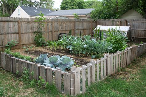 Self Sufficient Backyard - 5 budget friendly strategies to creating an