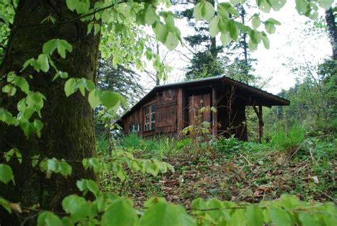 l aventure de s 233 journer dans une cabane dans les bois archzine fr