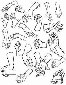 The Best Free Reference Drawing Images  Download From 1874