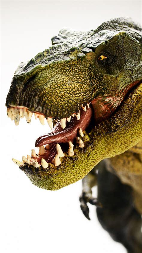 wallpaper dinosaur tyrannosaurus  rex  animals