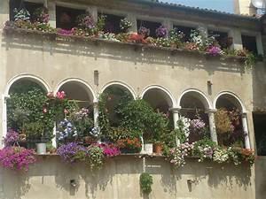 Sonnenschirme Für Den Balkon : pflanzen f r den balkon sommer sonnig mediterran ~ Michelbontemps.com Haus und Dekorationen