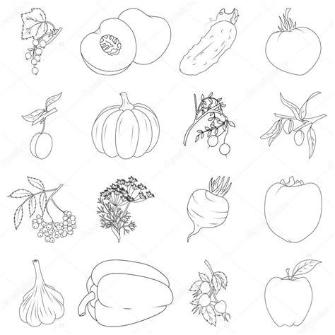 libro da colorare set  frutta  verdura vettoriali