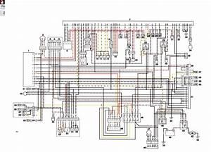 Daytona 675 Wiring Diagram Picture