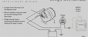16  1998 Lincoln Town Car Alternator Wiring Diagram