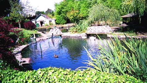 size of pond file sunny walter pillings pond jpg wikimedia commons