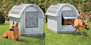Best insulated dog house heated dog house outdoor for Insulated heated dog house