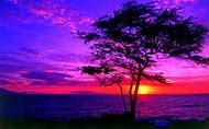 Beautiful Sunset Wallpaper Desktop