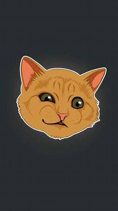 Meme Cat Humor Wallpapers Iphone Desktop Wallpaperaccess