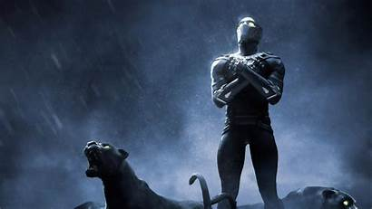 Panther 4k Wallpapers Rise 1080p Ultra Chadwick