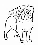 Pug Coloring Pages Funny Face Dog Faces Pugs Print Printables Colouring Printable Baby Para Desenhos Puppy Adult Sheets Dogs Colorluna sketch template