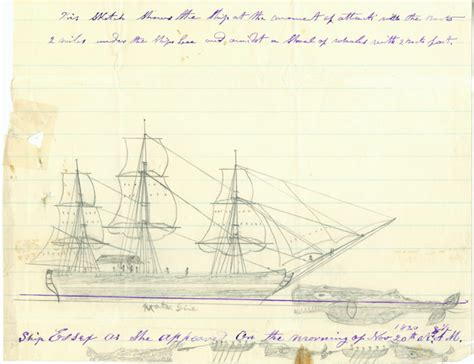Legend Boats Salesforce by In The Of The Sea The Tragedy Of The Whaleship