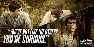 The Maze Runner Film images Movie Quote HD wallpaper and ...