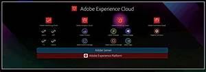 Adobe Releases Experience Platform And Cdp  Iterates Sensei