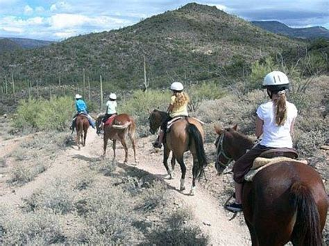 cross spur cave creek stables horseback riding tripadvisor arizona phoenix