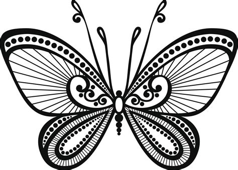 butterfly tattoos  names